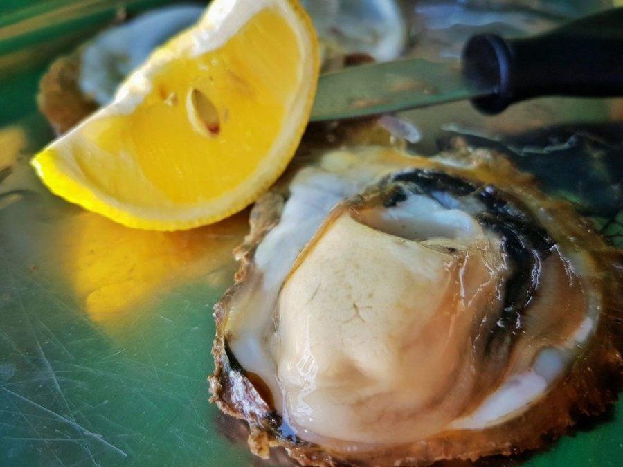 Istrian Food from Istria Croatia Travel Blog - 1