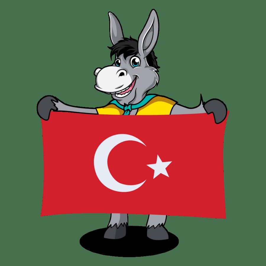 Balkan Flags_Turkey 2