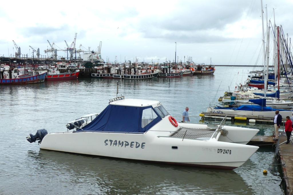 Stampede boat cruise Port Elizabeth