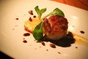 Seared Scallops - short rib marmalade, squash puree, pomegranate
