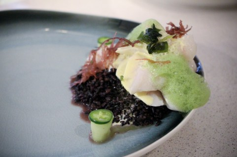 Grouper Cheeks – black rice, shoyu hollandaise, sea lettuces