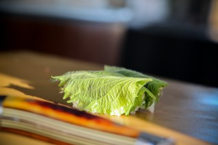 Shiso Leaf Wrapped