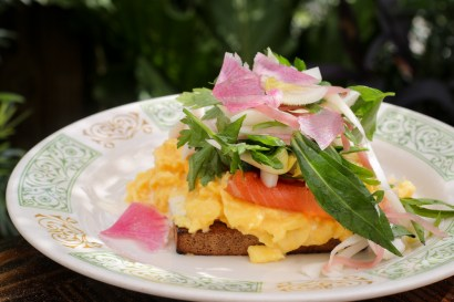 Lox Tartine on toasted pumpernickel, soft scrambled egg, creme fraiche and fresh picked herbs;