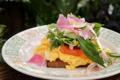 Lox Tartine on toasted pumpernickel, soft scrambled egg, creme fraiche and fresh picked herbs;