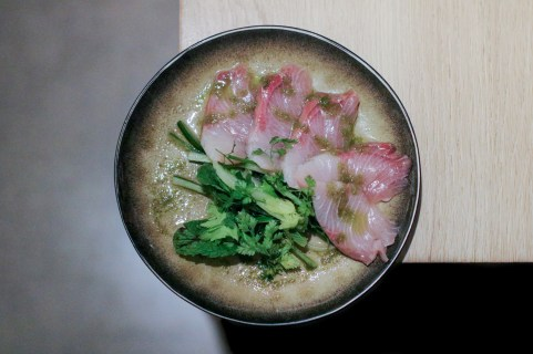 Hamachi w/ White Ponzu, Green Chili & Herbs