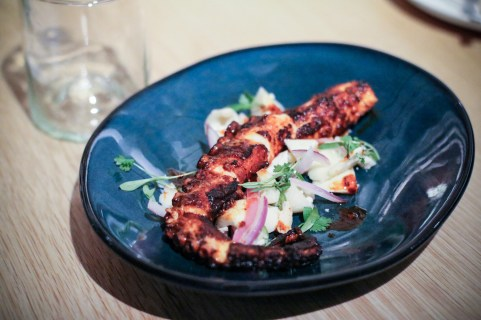 Grilled Octopus w/ Avocado, Key Lime & Hearts of Palm