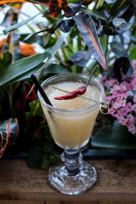 Killer Bee w/ beefeater gin, kelvin lemon, thai chili, lemongrass, ginger