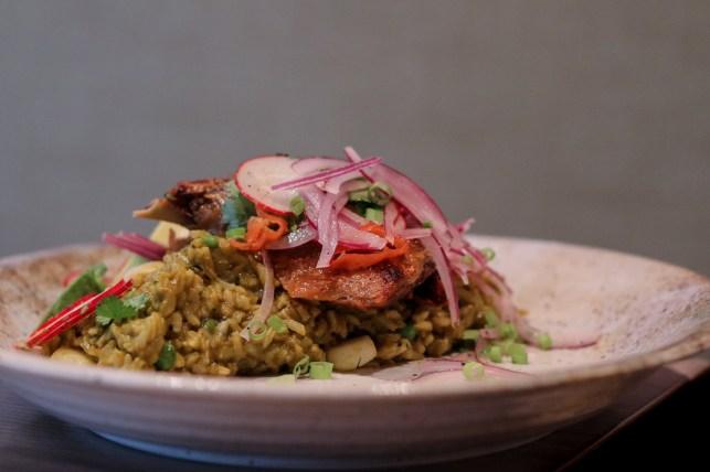 Arroz con pato, avocado, radish, onion salsa, leche de tigre