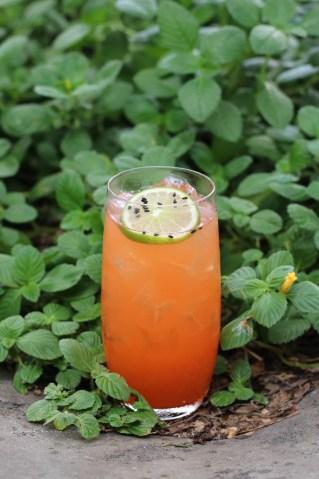 Sesame Sling w/ Tanqueray Gin, Mango, Key Lime, Hibiscus & Sesame