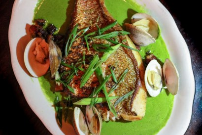 Pan Roasted Snapper w/ clams, bacon, green onion, green sauce