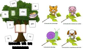 Arbre de la lecture + branches