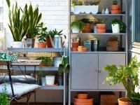 8 Easy Ways To Achieve A Beautiful Balcony Garden | Chatelaine