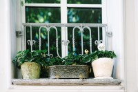 10 tips for creating a beautiful balcony garden