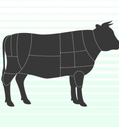 cow illustration with beef sections [ 1024 x 768 Pixel ]