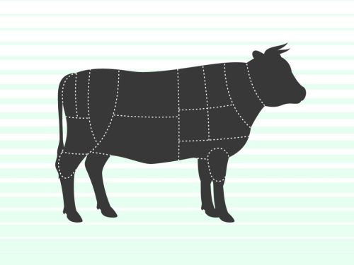 small resolution of cow illustration with beef sections