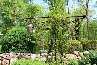 In the garden - photo Bett Foley