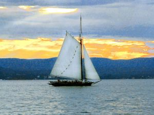 Clearwater Sloop