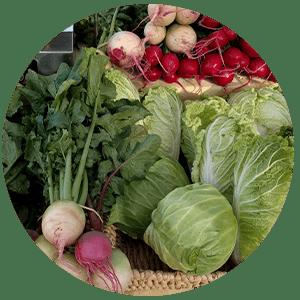 Farm Fresh Produce NC