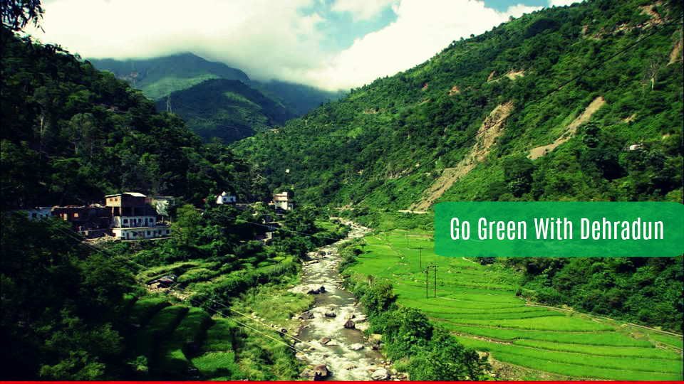 Go Green And Feel The Natural Beauty Of Dehradun