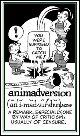 learn english word Animadversion and origin