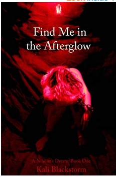 What is your series A Nihilist's Dream about? Find Me in the Afterglow
