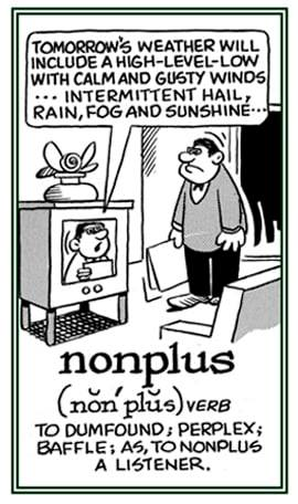 NONPLUS Meaning NONPLUS Etymology NONPLUS Synonyms and Antonyms Cartoon grammar rules chatsifieds