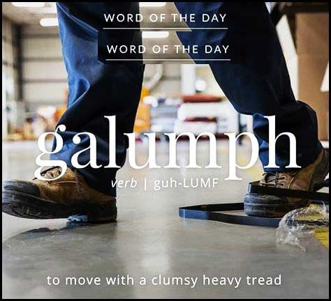 Wordipedia Learn GALUMPH Meaning Etymology and Synonyms definition Chatsifieds