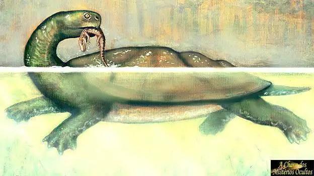 Será que o monstro do Lago Ness é na verdade uma antiga tartaruga marinha?