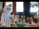 The Easter Bunny Who Drank 18 Troughs of Wine on Seder 18 Years Ago - He Shouldn't Have! Very Funny.