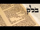 Parashat Balak - Why is there evil in the world? - Rabbi Alon Anava