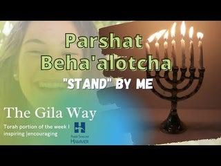 Parashat Beha'alotcha Stand By Me | The Gila Way