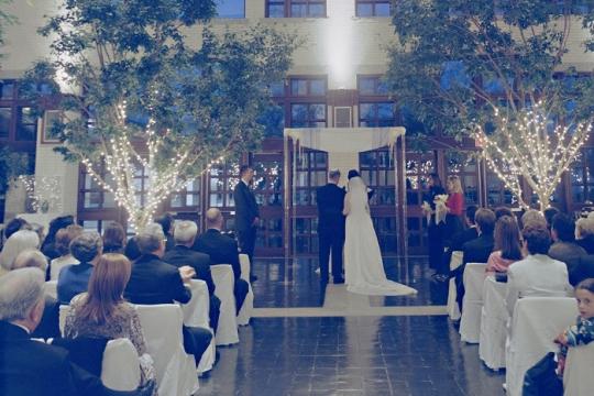 Ilene goldman's wedding, bride and groom standing under the chuppah