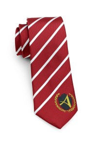 Custom Logo Ties and Matching Logo Scarves