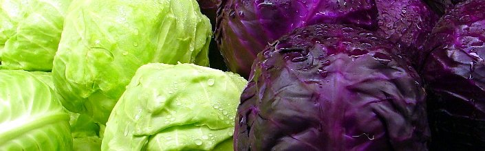 Kebab Shop Salad Dressing
