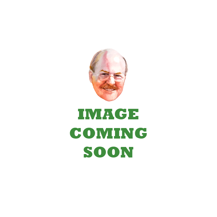 watercolor brush sets cheap