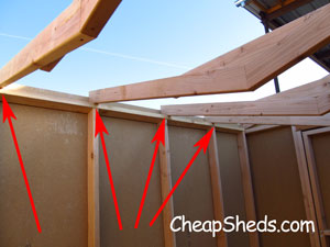 Step 8: Frame The Roof | CheapSheds com