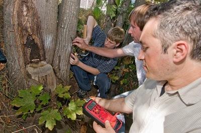 20090904_pid51873_aid51869_treepowergroup_w600