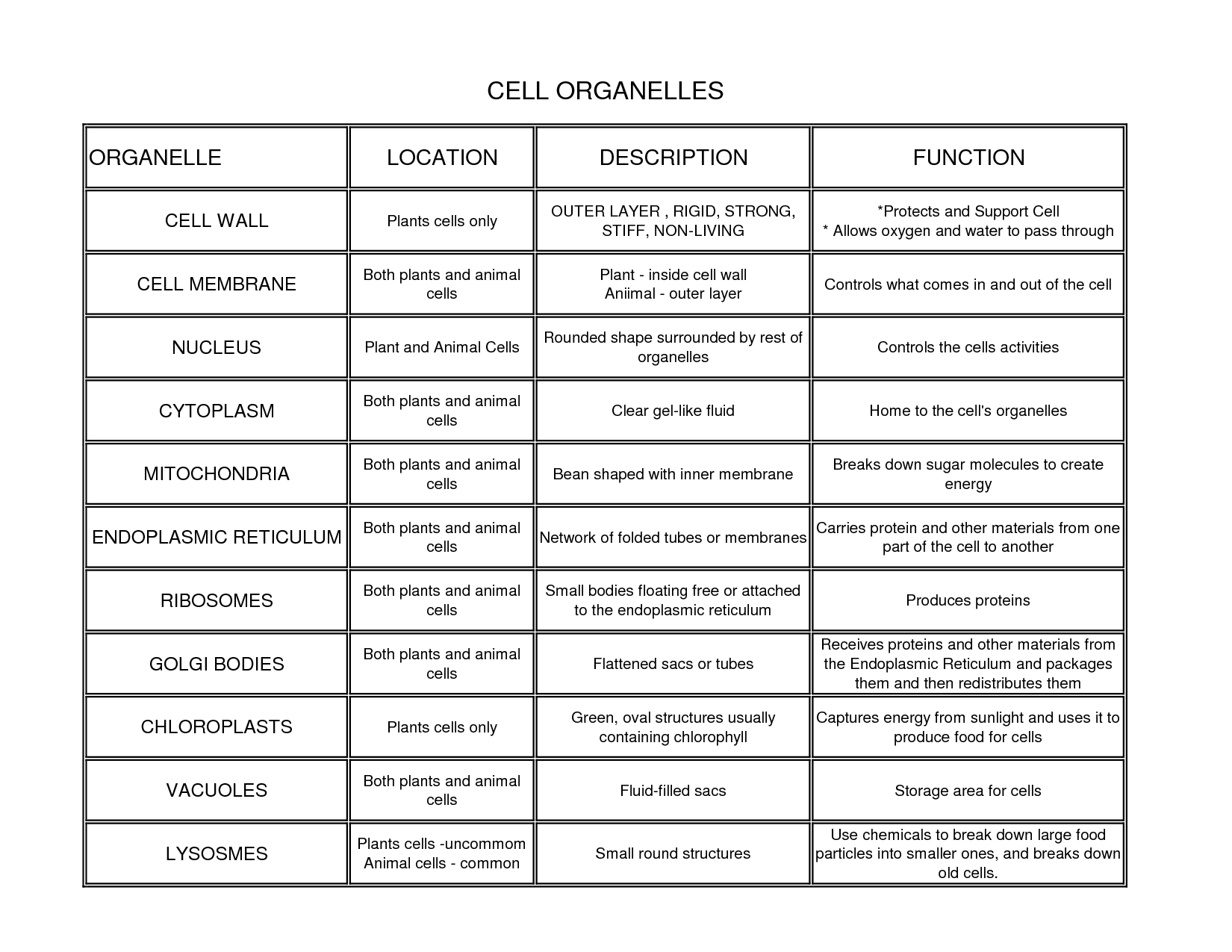 Biology 1 2 Final Exam Cheat Sheet By El Go650