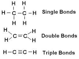 Biology 1-2 Final Exam Cheat Sheet by Eldiego650