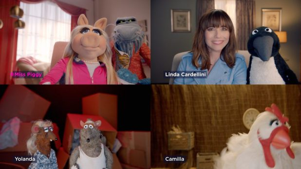 Muppets Now: Linda Cardellini