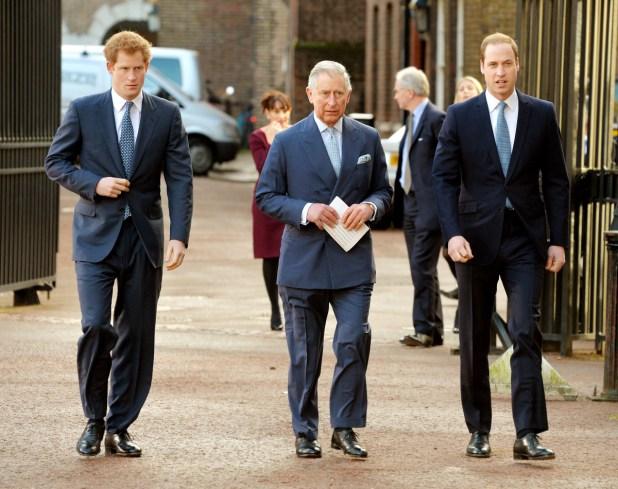 Prince Harry Prince Charles Prince William