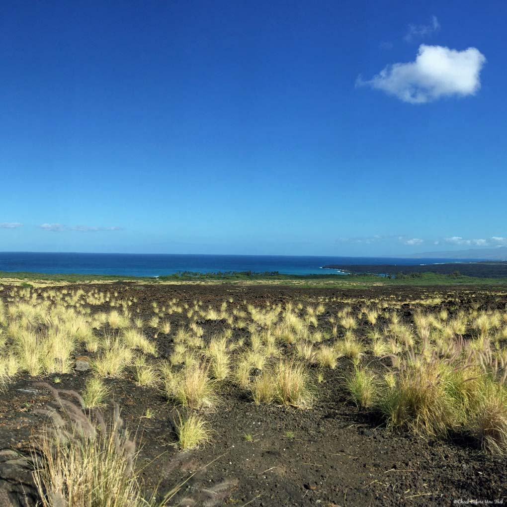 Kiholo Bay Scenic Overlook - Big Island, Hawaii, USA