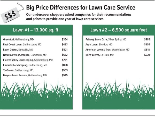 selecting lawn care service