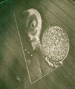 10 of The Best Crop Circles Ever â?? Collective Evolution