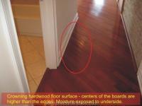 Condo Floor, Walls, Windows and Interior Doors Inspection ...