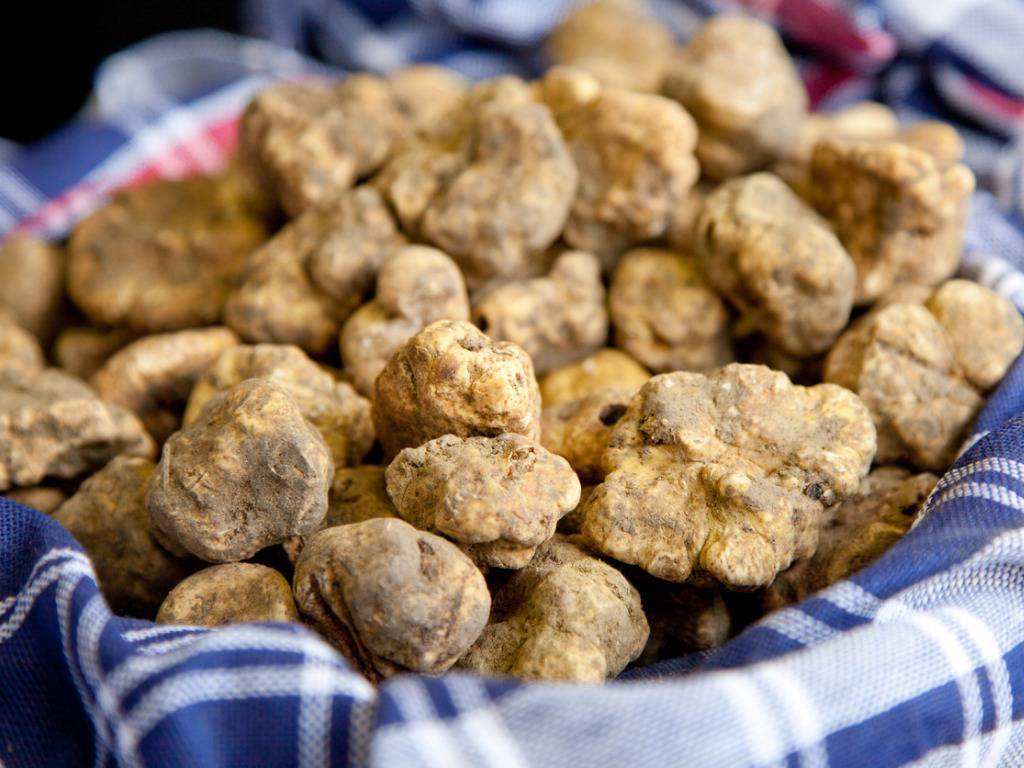 Gateau di patate la ricetta originale napoletana per