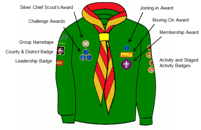 Uniform-Cub