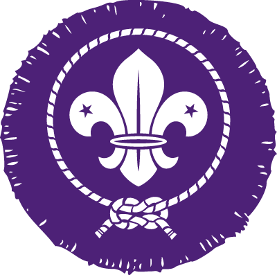 explorer scout badges