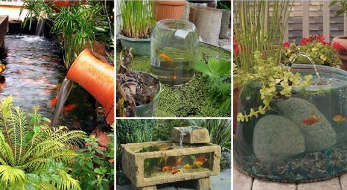 Garden Or Backyard Aquarium Ideas Will Blow Your Mind
