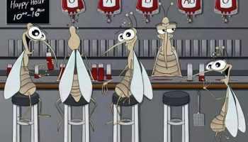 miti sulle zanzare